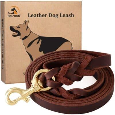 Fairwin Leather Dog Leash