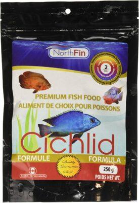 NorthFin Cichlid