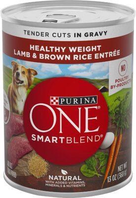 Purina ONE Tender Cuts in Gravy