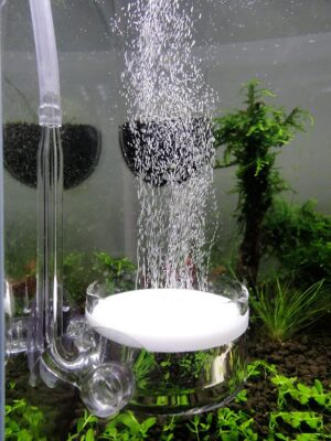 Jardli Pollen Glass CO2 Diffuser