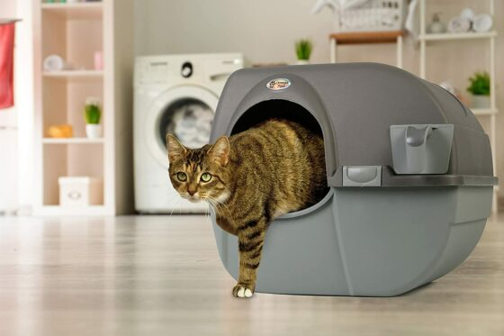 Omega Paw Roll 'n Clean Self-Cleaning Litter Box