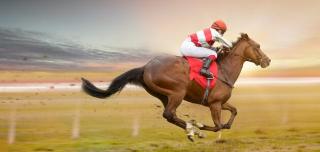 160+ Racehorse Names for Your Dashing Steed