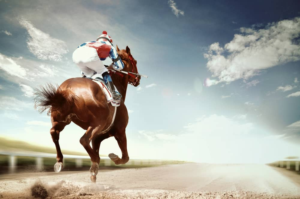 brown racehorse on track