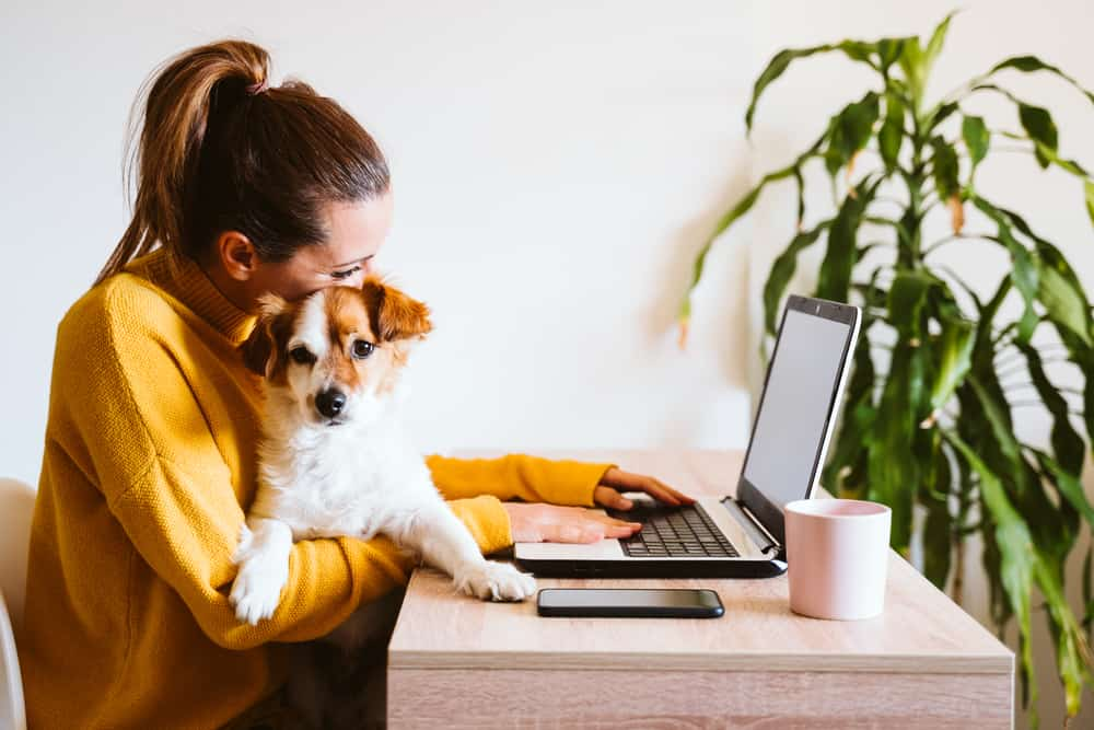 woman holds dog and works on laptop